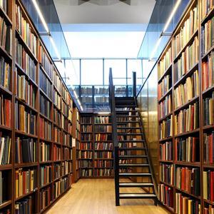 Библиотеки Дедовичей