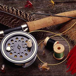 Охотничьи и рыболовные магазины Дедовичей