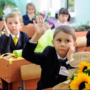 Школы Дедовичей