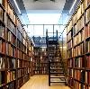 Библиотеки в Дедовичах